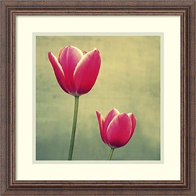 Amanti Art Lillian Bell 'Tulip in Fuchsia II' Art Print 19 x 19 in. Distressed Wood Frame (DSW2969009)