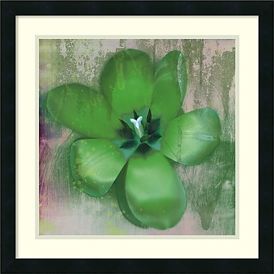 Amanti Art Erin Clark 'Tulip Fresco (green)' Art Print 22 x 22 in. Satin Black Frame (DSW2969018)