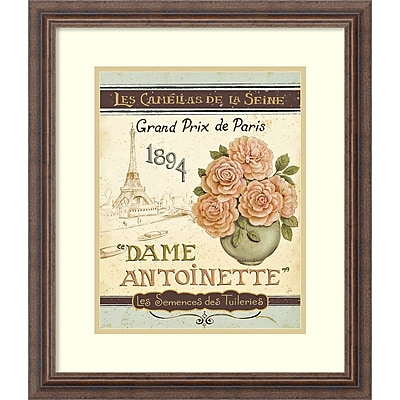 Amanti Art Daphne Brissonnet 'French Seed Packet II' Art Print 19 x 22 in. Distressed Frame (DSW1395354)
