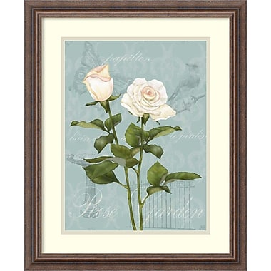 Amanti Art ? Impression encadrée « Rose crème II » par Jade Reynolds, 19 x 23 po (DSW1418940)