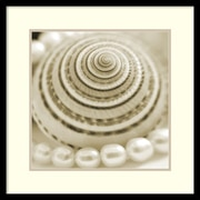 PhotoINC Studio Shells and Pearls 1 Framed Art Print 23 x 23-inch (DSWW1421218)