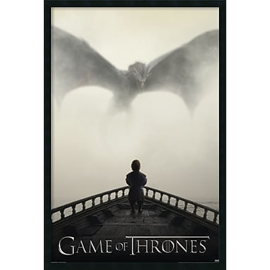 Amanti Art Game of Thrones Lion and Dragon Framed Art Print with Gel Coated Finish, 25