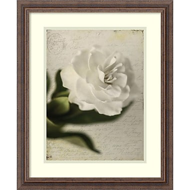 Amanti Art Honey Malek Gardenia Grunge II Framed Art Print, 19