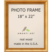 Townhouse Gold Photo Frame 21 x 25-inch (DSW1385306)