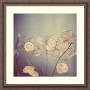 """Alicia Bock 'There Is Softness' Framed Art Print 23"""" x 23"""" (dsw1418430)"""