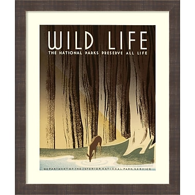 Amanti Art Frank S. Nicholson Wild Life, The National Parks Preserve All Life, Framed Art Print, 22