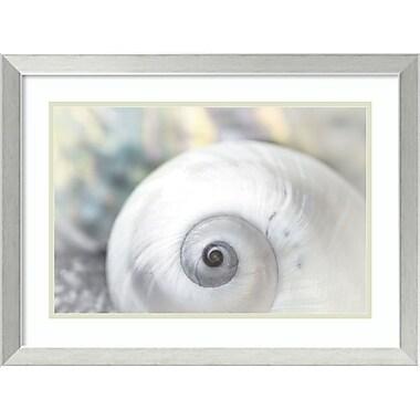 Amanti Art ? Impression encadrée « Douce perle » par Dina Marie avec cadre en acier inoxydable, 24 x 18 po (DSW2973106)
