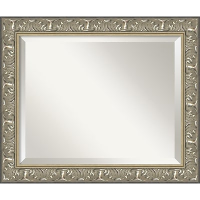Amanti Art Renaissance Silver Wall Mirror - Medium 24
