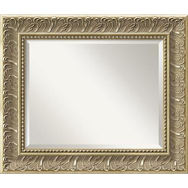 Amanti Art Silver Baroque Wall Mirror, Medium, 26