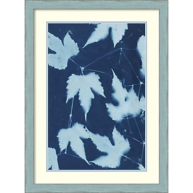 Amanti Art Renee W. Stramel Cyanotype No.10 Framed Art Print, 23