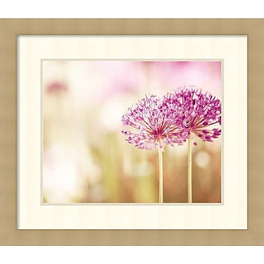 Amanti Art Carolyn Cochrane Bloom Framed Art Print, 29