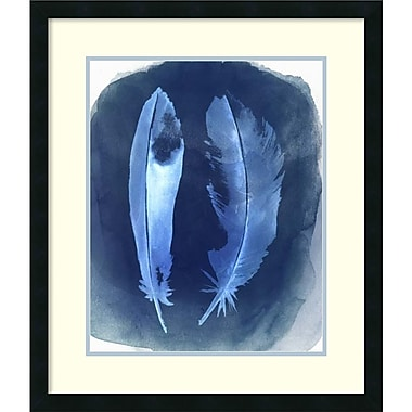 Amanti Art Grace Popp Feather Negatives I Framed Art Print, 24