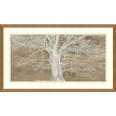Impression encadrée « White Oak » par Aprile Alessio, 29 x 17 po (DSW2972629)