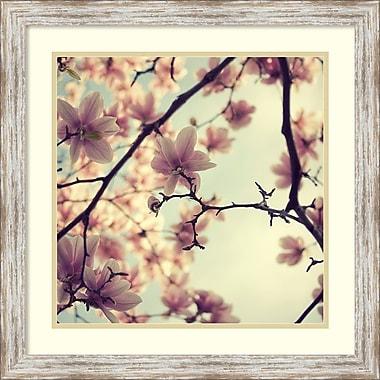Amanti Art ? Impression encadrée « Floraisons roses » par Irene Suchocki, 23 x 23 po (DSW1418944)