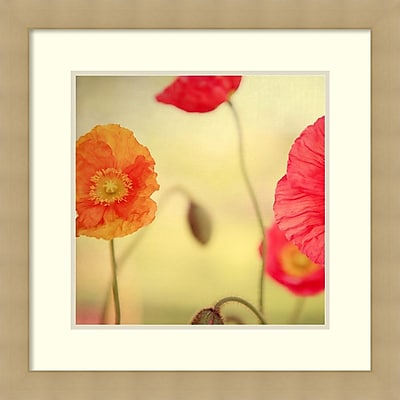 Alicia Bock 'La Vie en Rose' Framed Art Print 25