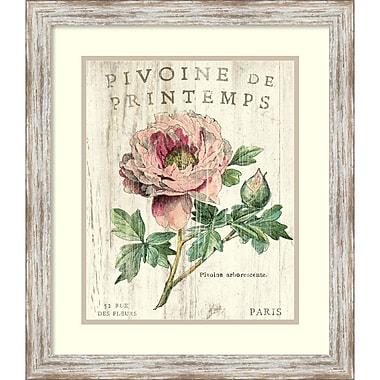 Amanti Art Sue Schlabach Pivoine de Printemps Framed Art Print, 20