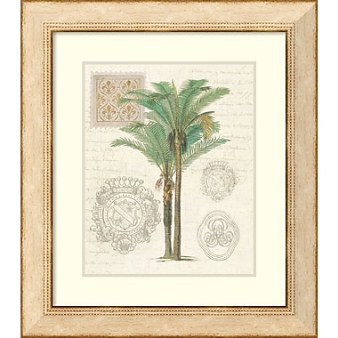 Wild Apple Portfolio 'Vintage Palm Study II' Framed Art Print 25