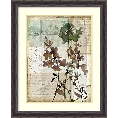 Amanti Art Jennifer Goldberger Music Box Floral II Framed Art Print, 27
