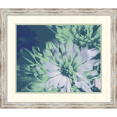 A. Project Teal Bloom II Framed Art Print, 28