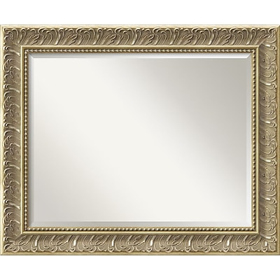 Amanti Art Silver Baroque Wall Mirror - Large 34