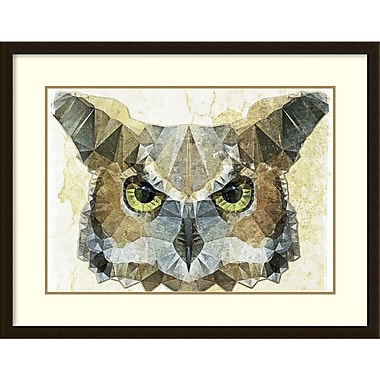 Amanti Art Ancello Abstract Owl Framed Art Print, 37