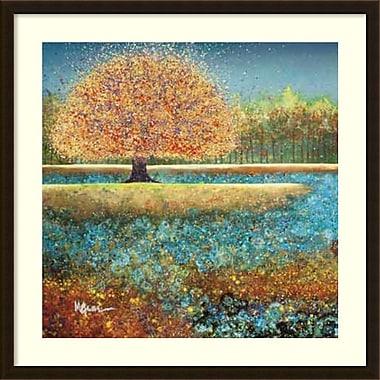 Amanti Art Melissa Graves-Brown Jewel River Framed Art Print, 34
