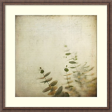 Amanti Art Dawn Hanna Union Framed Art Print, 33