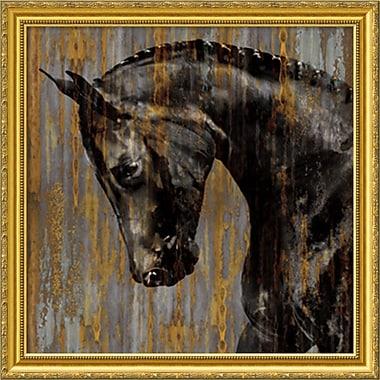 Amanti Art Martin Rose Horse I Framed Art Print, 31