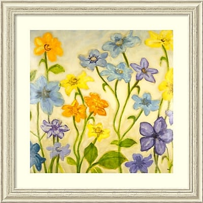 Randy Hibberd 'Bloom I' Framed Art Print 33