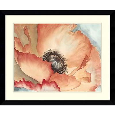 Megan Meagher 'Watercolor Poppy II' Framed Art Print 37