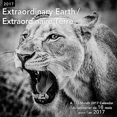 Daydream 2017 Wall Calendar, Extraordinary Earth, Bilingual