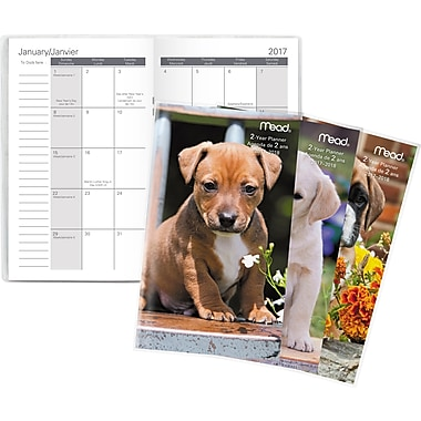 Mead® 2017-2018 Two-Year Pocket Monthly Planner, Puppies Design, Bilingual