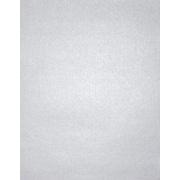 """LUX® Paper, 11"""" x 17"""", Silver Metallic, 1000 Qty (1117-P-M06-1M)"""