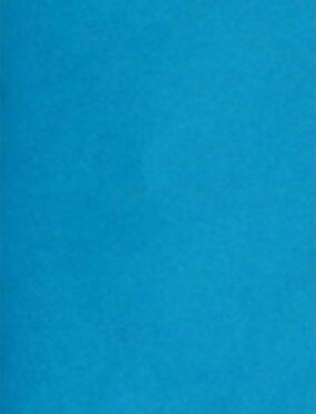 LUX 11 x 17 Cardstock 500/Box, Pool (1117-C-102-500)