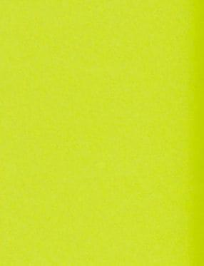 LUX 11 x 17 Cardstock 500/Box, Wasabi (1117-C-L22-500)