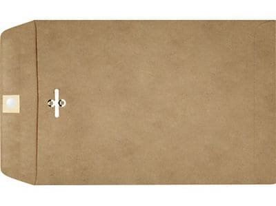 LUX 6 x 9 Clasp Envelopes 500/Box) 250/Box, Grocery Bag (69GB-250)