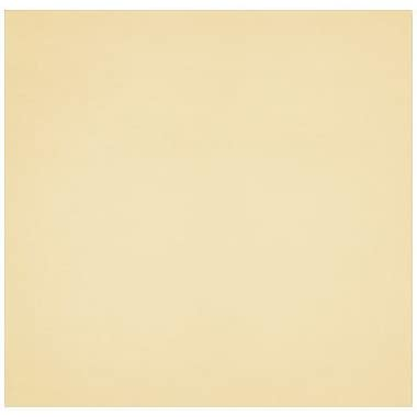 LUX A7 Drop-In Envelope Liners (6 15/16 x 6 5/8) 500/Box, Champagne Metallic (LINER-CHAM-500)