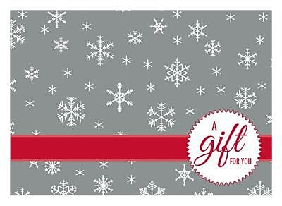LUX® #17 Mini Gift Card Envelopes, 2 11/16