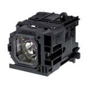 NEC Display – Lampe de rechange pour projecteur, 330 W, (NP06LP)