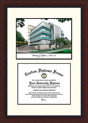 Campus Images NCAA California University, Irvine Legacy Scholar Diploma Picture Frame