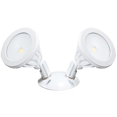 American Lighting LLC 2-Light Flood Light