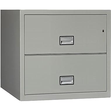 Phoenix Safe International 2-Drawer Lateral Filing Cabinet ; Gray
