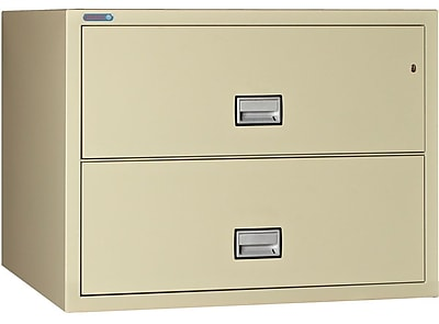 Phoenix Safe International 2-Drawer Lateral Filing Cabinet