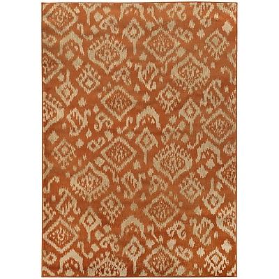 StyleHaven Transitional Tribal Ikat Polypropylene 5'3