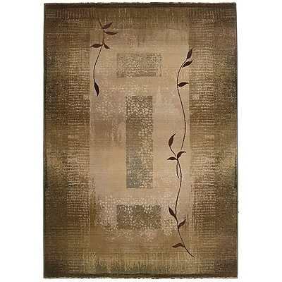 StyleHaven Transitional Border Polypropylene 4'X 5'9