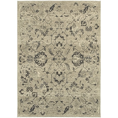 StyleHaven Transitional Floral Polypropylene 6'7