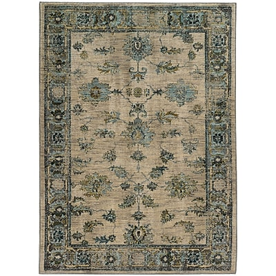 StyleHaven Transitional Distressed Traditional Nylon/Polypropylene 6'7