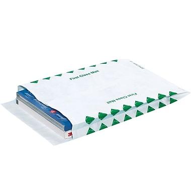 Partners Brand Tyvek Expandable Envelopes, 10