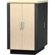 APC – Salle de serveur dans un boîtier sécuritaire et insonorisé NetShelter CX 24U, 19 po (482,6 mm) 24U larg., chêne, (AR4024A)