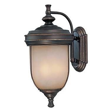 Aurora Lighting 3-Light Incandescent Outdoor Wall Sconce - Antique Rust (STL-LTR439899)